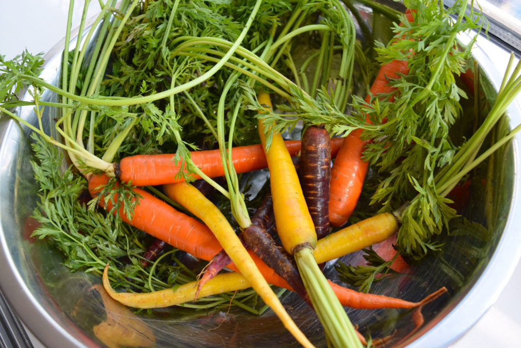 carrots-in-bowl